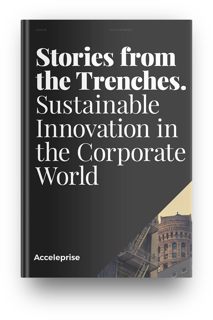Innovation Book_mockup